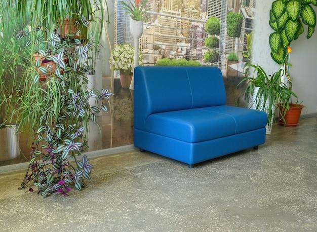 Синий удобный современный стильный диван в офисе. цветы в интерьере офиса.
