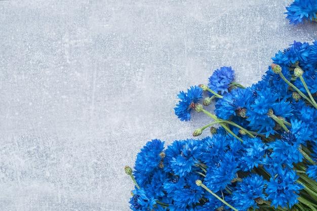 Blue cornflower border on gray background