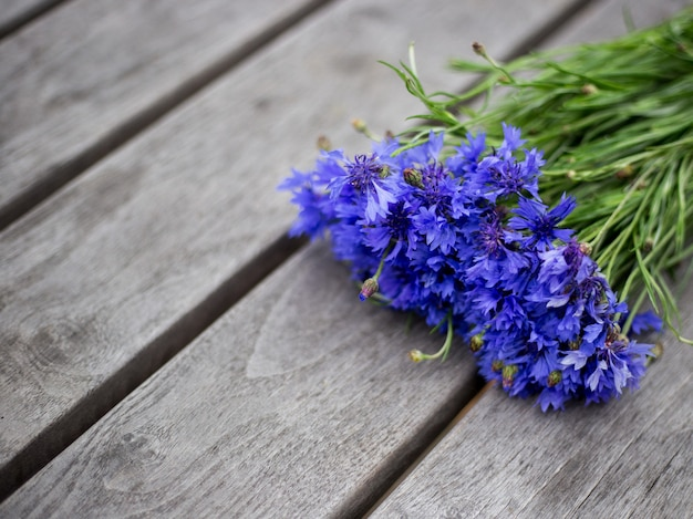 Blue cornflower flowers, summer wildflowers bouquet on gray wooden background, copy space