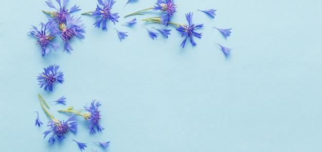 파란색 종이 바탕에 파란 cornflowers