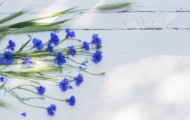 흰색 오래 된 나무에 블루 cornflowers