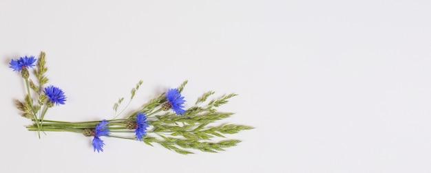 白い表面に青いヤグルマギク