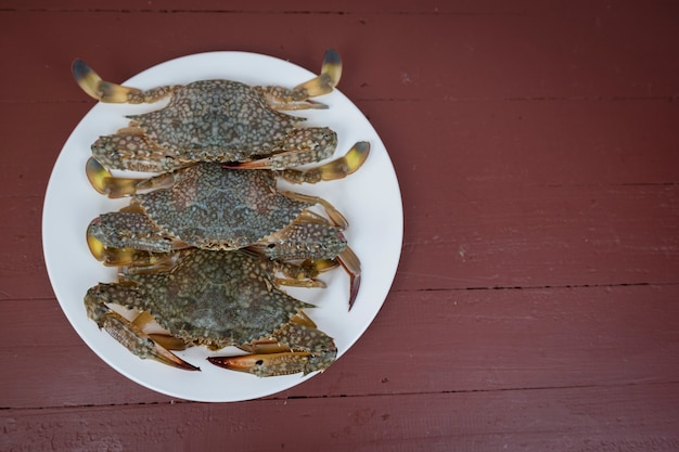 Blue crabs on a plate, on a wooden background