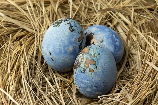 巣の中の青いイースターエッグ