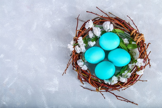 Blue easter eggs in a nest with white flowers on a gray concrete background.