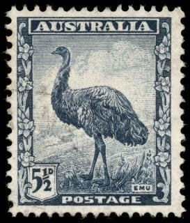 Emu blu francobollo