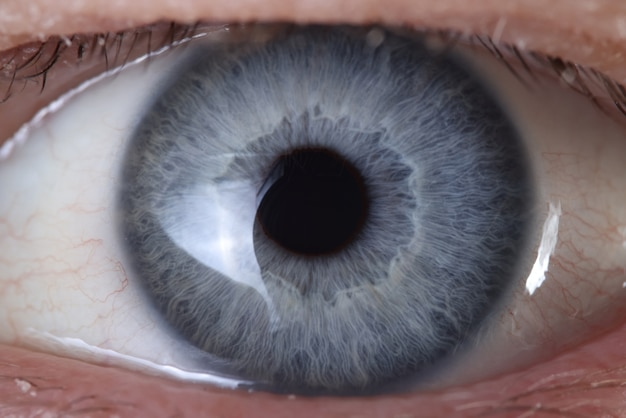 Blue eye close up. production of colored contact lenses