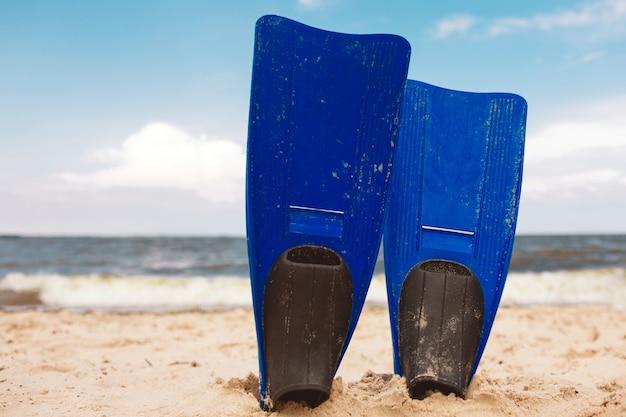 海岸のビーチで砂に立っている青いヒレ。明るく輝く太陽。外の楽園。