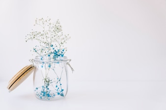 Blue flowers in glass with space on right