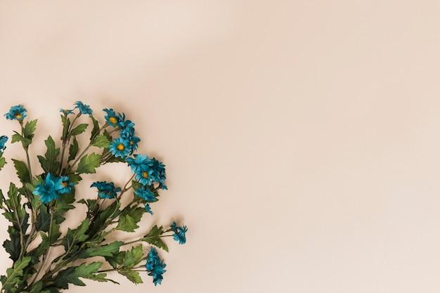 青い花、緑の茎