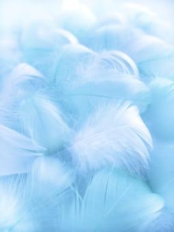 青いふわふわの鳥の羽柔らかなぼやけたスタイルの青い鳥の羽美しい霧