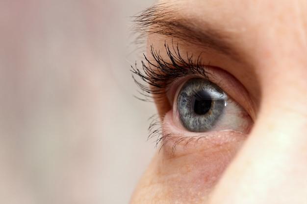 Blue human eye. the woman's, eye macro close-up