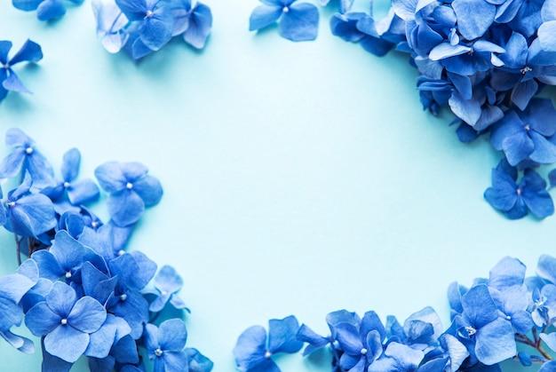Blue hydrangea flowers on blue background