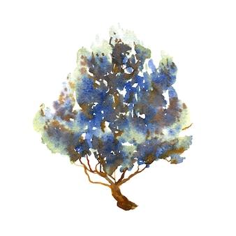 白い背景の上の青いジュニパー手描きの冬の木水彩イラスト