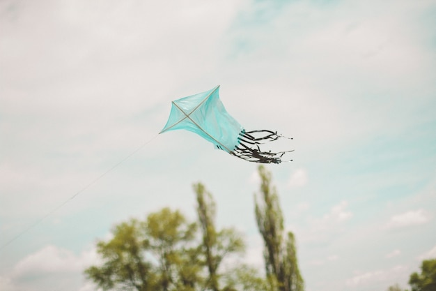Blue kite with black tail in flight