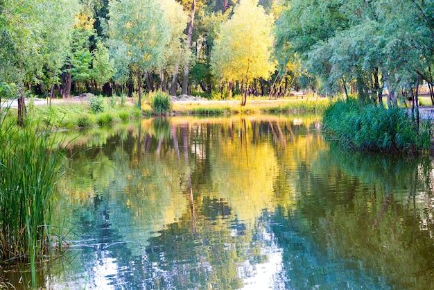 日没時の青い湖と緑の木
