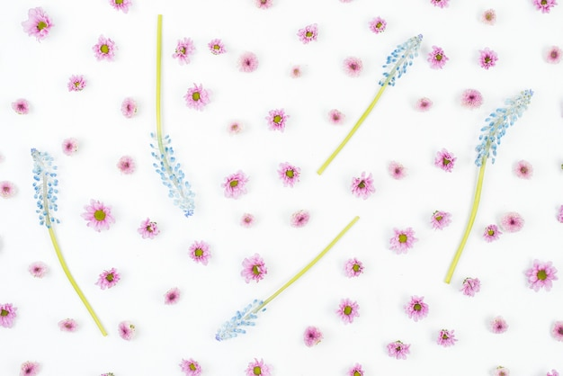 Blue mascara with small pink flowers on white background