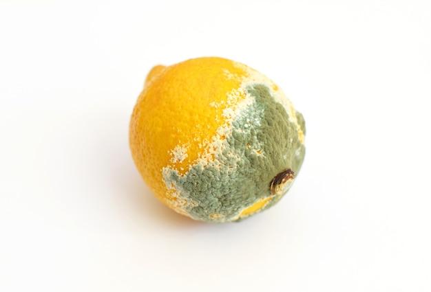 Голубая плесень на желтом лимоне.
