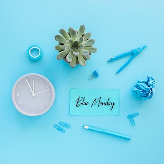 Blue monday concept with succulent plant