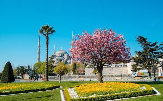 녹색 공원이 있는 블루 모스크 이스탄불 터키 이슬람교 cami mescit 건축 기념물 센터