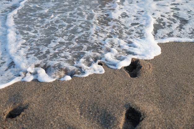 푸른 바다. 푸른 파도입니다. 모래. 바다. 해수. 노란 모래. 바다 해안입니다. 사할린 고품질 사진
