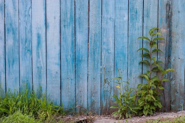 青い古いフェンスと緑の茂み