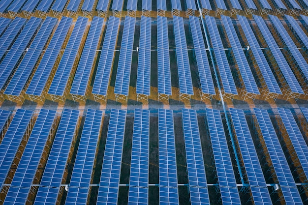 Blue panel lines solar cells energy business and industry  clean power electric in thailand