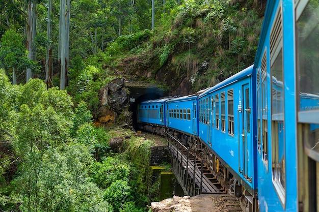 A blue passenger train moves through the jungle of sri lanka