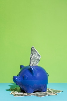 Blue piggy bank with cash
