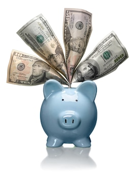 Blue piggy bank with dollars - isolated