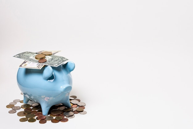 Blue piggy bank with money and coins