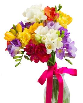 青、ピンク、黄色のフリージアの花は、白い背景で隔離のクローズアップ