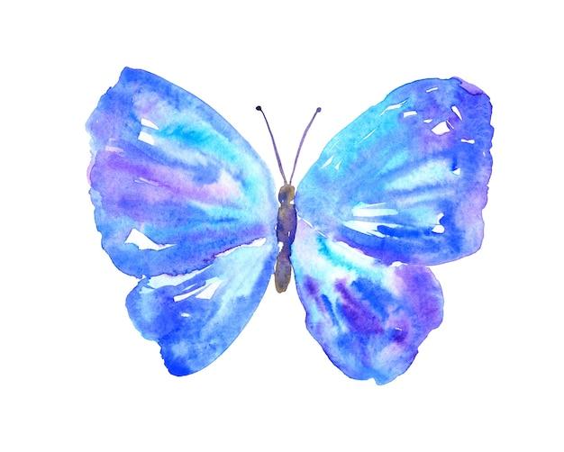 青紫の蝶。手描きの水彩イラスト。孤立。