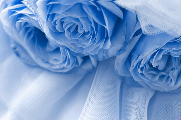 푸른 베일에 파란 장미 추상적 인 배경 상위 뷰 매크로