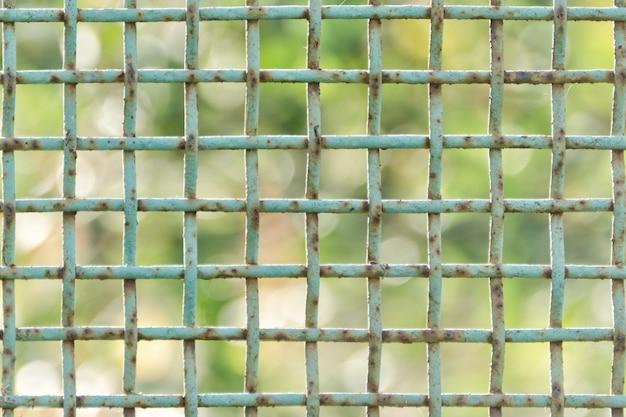 Голубой ржавый конец клетки вверх. зеленый фон