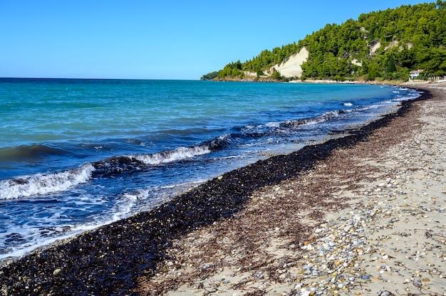 Синее море и пляж с лесом в фурка скала, халкидики, греция
