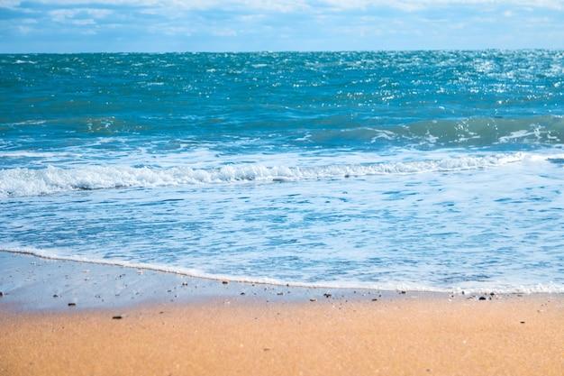 青い海と金色の砂のビーチ。夏休みの背景