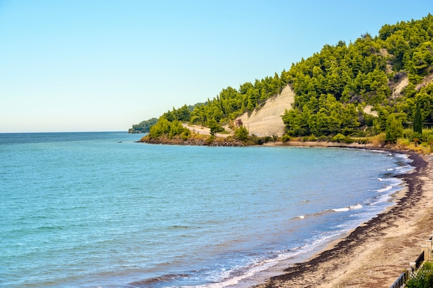 Blue sea and beach with forest in fourka scala, halkidiki, greece