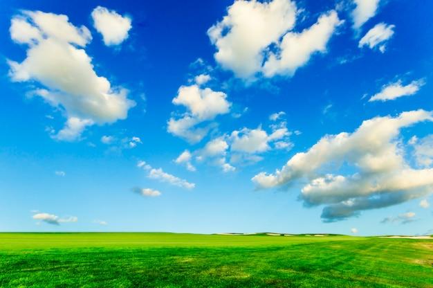 푸른 하늘 흰 구름