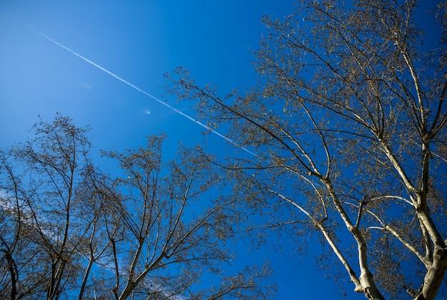 Голубое небо с множеством линий облаков из самолетов.
