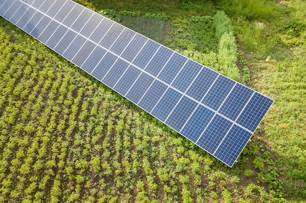 Blue solar panels for clean energy on green grass.