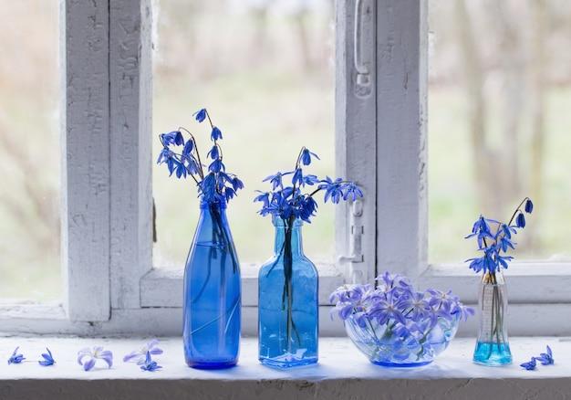 窓辺に青い春の花