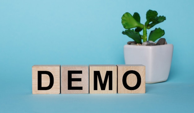On a blue surface, on wooden cubes near a plant in a pot demo is written