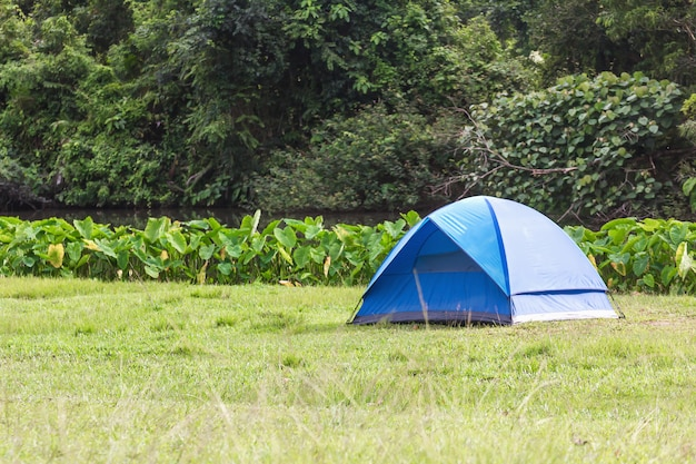 Blue tourist tents in forest