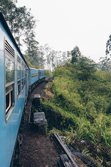 Blue train crossing tea plantation in asia