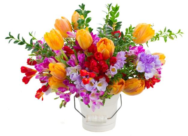 青、紫、赤のフリージアとオレンジ色のチューリップの花が白で隔離
