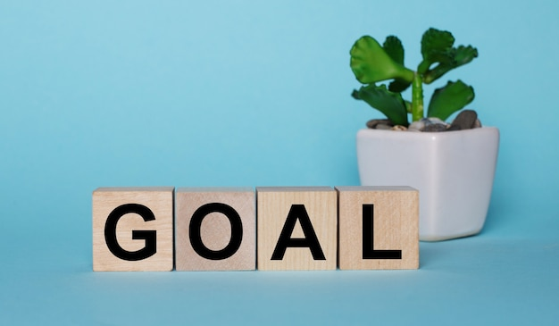 On a blue wall, on wooden cubes near a plant in a pot goal is written