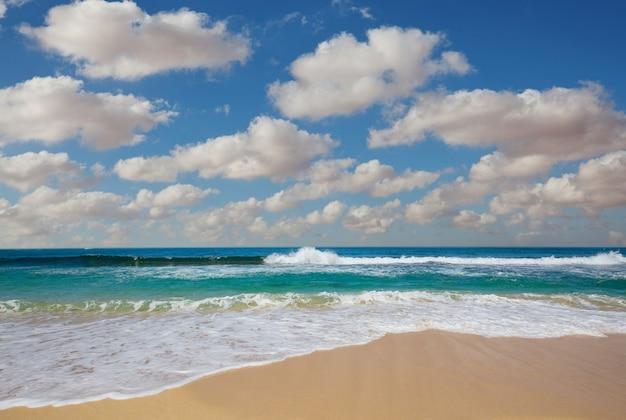 해변에서 푸른 물결입니다.