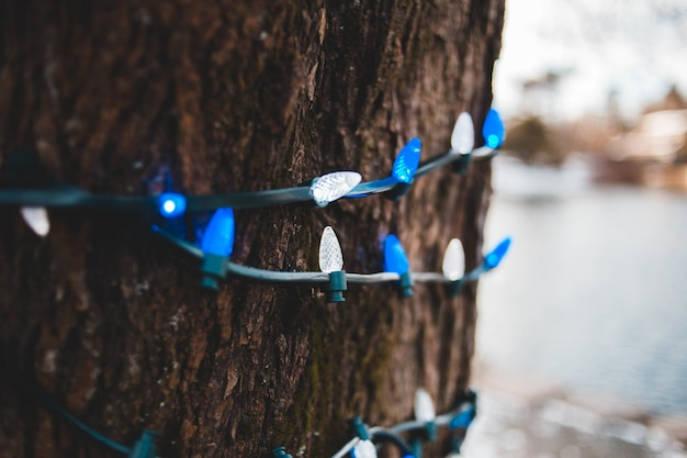 Blue and white string lights