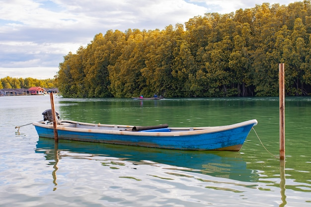 Blue wooden boat floating over fresh water canal against beautiful mangrove forest